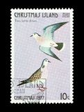 Two turtle doves. Christmas Island - circa 1977: Two turtle doves - part of a set of 12 mail stamps printed on Christmas Island depicting gifts given during the Stock Images