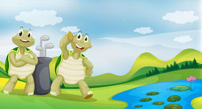 Two turtles near the river. Illustration of two turtles near the river Stock Images
