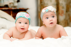 Two twin babies, girls in nice headbands Stock Image