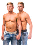 Two twin boys Royalty Free Stock Photo