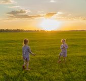 Two twin girls playing in the meadow at sunset. Happy childhood. royalty free stock photography