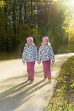 Two twin sisters go through the autumn park hand in hand royalty free stock photos