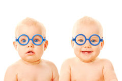 Two twins babies boys wearing glasses. Royalty Free Stock Image