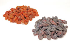 Two types of raisins Stock Image