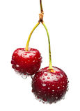 Two unequal cherries on one bunch Stock Images