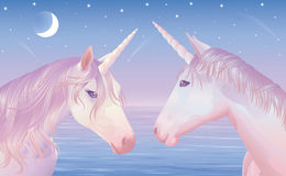 Two unicors. vector illustration