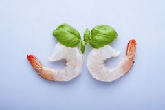 Two unshelled tiger shrimps Royalty Free Stock Images