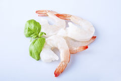 Two unshelled tiger shrimps. Isolated on white Stock Images