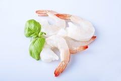 Two unshelled tiger shrimps Stock Images