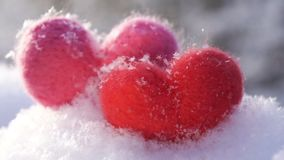 Two Valentine`s woolen hearts on the clear white snow in winter slow motion. Valentine`s day concept. Red and pink woolen toy hearts standing in the snow and stock video