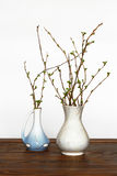 Two vases with branches on the table Stock Photos