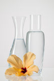 Two vases with clean water and hibiscus flower Royalty Free Stock Photo