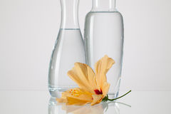 Two vases with clean water and hibiskus flower. On a glass table Royalty Free Stock Photos