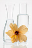 Two vases with clean water and hibiskus flower. On a glass table Royalty Free Stock Photo