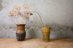 Two vases with dry colours on a  table Royalty Free Stock Photography