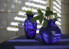 Two Vases with Reflections Royalty Free Stock Photography