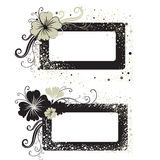 Two Vector Floral vintage frame Royalty Free Stock Photography