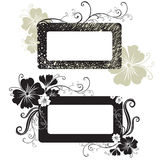 Two Vector Floral vintage frame Stock Photo