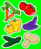 Two vegetable. Illustration representing different pairs of vegetables Stock Images