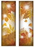 Two vertical autumn banner Stock Photos