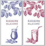 Two vertical orientation hand drawn flyers for berry milkshakes. Stock Photo