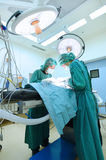 Two veterinarian doctor working in operating room Stock Photography