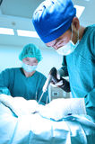 Two veterinarian doctor working in operating room take with art lighting and blue filter Royalty Free Stock Photos
