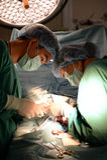 Two veterinarian surgeons Stock Photos