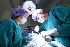 Two veterinarian surgeons in operating room Royalty Free Stock Images