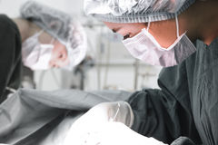 Two veterinarian surgeons in operating room Stock Photo