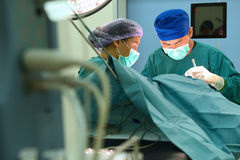Two of veterinarian surgery in operation room Royalty Free Stock Images
