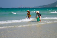 Two Vietnamese women are collecting sea shells on the shore in Nha Trang, Vietnam Royalty Free Stock Photos