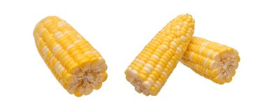 Two views of fresh corns Stock Photography