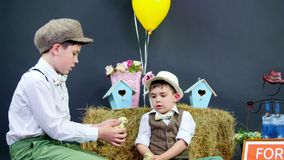 Two village, stylishly dressed boys play with ducklings and chickens, in the background a haystack, colored bird houses. Balloons and flowers. Nameplate for stock video