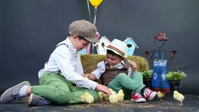 Two village, stylishly dressed boys play with ducklings and chickens, in the background a haystack, colored bird houses stock video footage