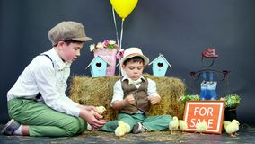 Two village, stylishly dressed boys play with ducklings and chickens, in the background a haystack, colored bird houses stock footage