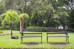 Two Vintage Benches at Suan Luang Rama 9 Park Stock Photography