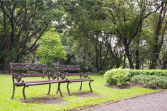 Two Vintage Benches at Suan Luang Rama 9 Park Stock Photos
