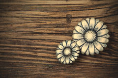 Two vintage buttons Royalty Free Stock Photos