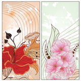 Two vintage floral cards Royalty Free Stock Photography