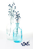 Two vintage glass bottles Stock Image