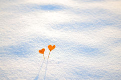 Two vintage orange tangerine hearts on white snow Royalty Free Stock Images