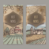 Two vintage wine labels with vineyard and castle color sketch. Royalty Free Stock Images