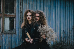 Two vintage witches gathered eve of Halloween Royalty Free Stock Photo