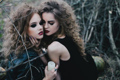 Two vintage witches gathered eve of Halloween. Two vintage witches gathered for the sabbat eve of Halloween Royalty Free Stock Images