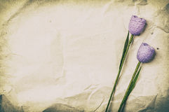 Two violet flowers. On a recycled paper as a back ground Stock Photo