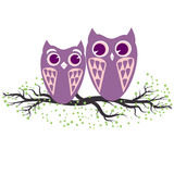 Two violet owls sitting on the tree branch. Vector illustration of cartoon owls in pastel colors. Family and romance concept with. Owls couple Royalty Free Stock Photos