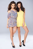 Two vivacious beautiful young women Royalty Free Stock Image
