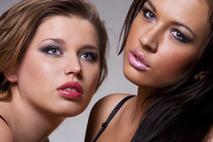Two voluptuous girls. Close-up portrait of two voluptuous girls Royalty Free Stock Photos