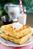Two waffles Stock Photography